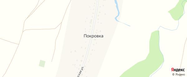 Покровская улица на карте деревни Покровки с номерами домов