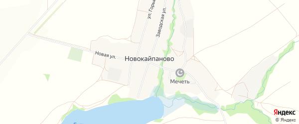 Карта села Новокайпаново в Башкортостане с улицами и номерами домов