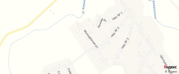 Молодёжная улица на карте деревни Ильмурзино с номерами домов
