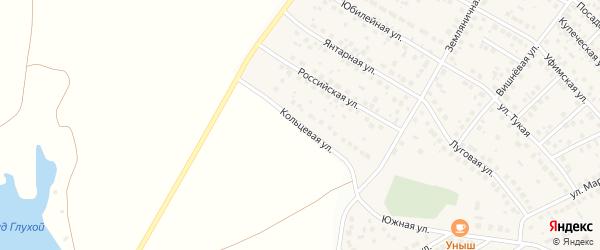 Кольцевая улица на карте села Дмитриевки с номерами домов
