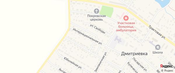 Интернациональная улица на карте села Дмитриевки с номерами домов