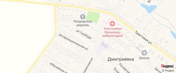 Улица Свободы на карте села Дмитриевки с номерами домов