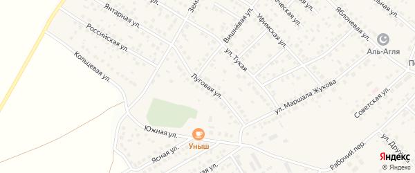 Луговая улица на карте села Дмитриевки с номерами домов