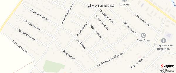 Молодежный переулок на карте села Дмитриевки с номерами домов