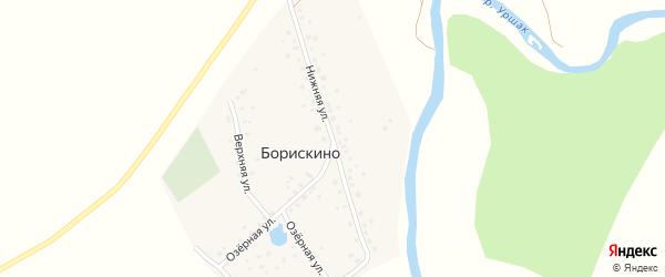 Нижняя улица на карте деревни Борискино с номерами домов