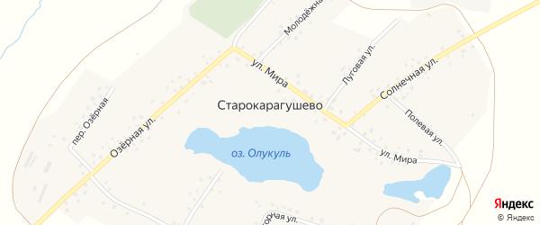 Молодежная улица на карте деревни Старокарагушево с номерами домов