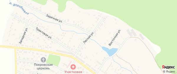 Лесная улица на карте села Дмитриевки с номерами домов