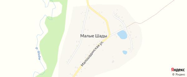 Малошадинская улица на карте деревни Малые Шады с номерами домов