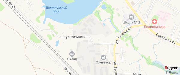 Улица Мичурина на карте села Ермолаево с номерами домов
