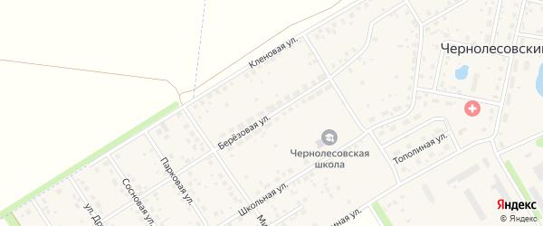 Березовая улица на карте села Чернолесовского с номерами домов