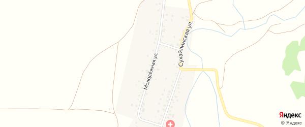 Молодёжная улица на карте села Мурдашево с номерами домов