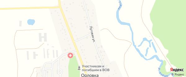 Луговая улица на карте деревни Орловки с номерами домов