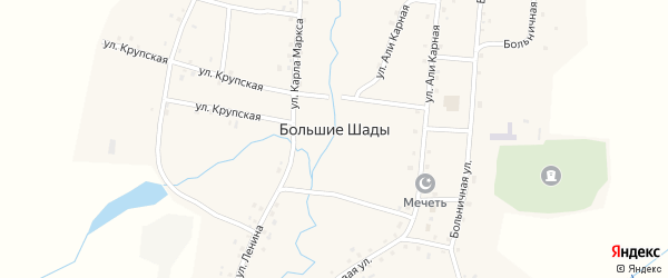 Крупская улица на карте деревни Большие Шады с номерами домов