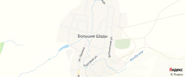 Карта деревни Большие Шады в Башкортостане с улицами и номерами домов