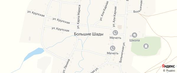Береговая улица на карте деревни Большие Шады с номерами домов