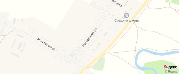 Молодёжная улица на карте села Айгулево с номерами домов