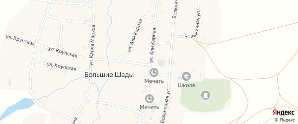Али Карная улица на карте деревни Большие Шады с номерами домов
