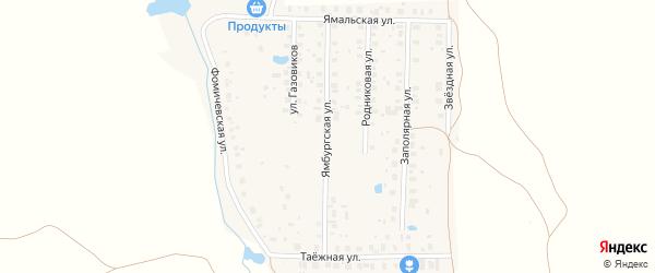 Ямбургская улица на карте деревни Фомичево с номерами домов