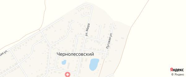 Улица Ветеранов на карте села Чернолесовского с номерами домов
