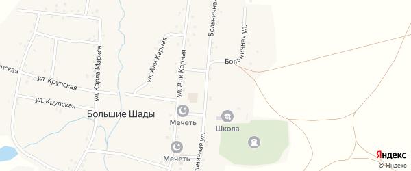 Больничная улица на карте деревни Большие Шады с номерами домов