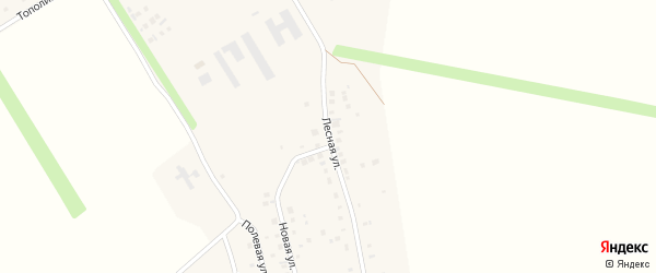 Лесная улица на карте села Чернолесовского с номерами домов