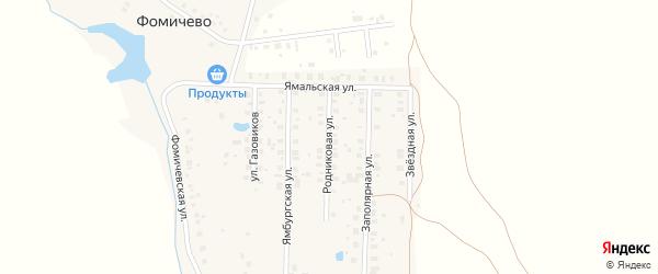 Родниковая улица на карте деревни Фомичево с номерами домов