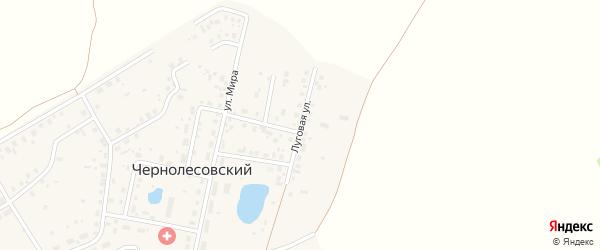 Луговая улица на карте села Чернолесовского с номерами домов