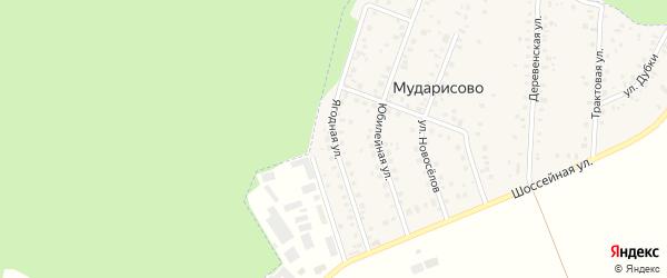 Ягодная улица на карте деревни Мударисово с номерами домов