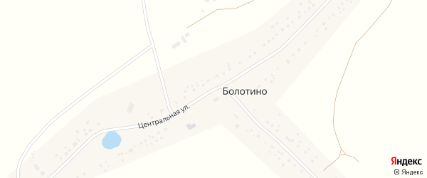 Центральная улица на карте села Болотино с номерами домов