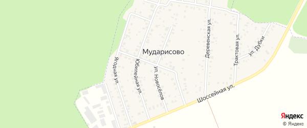 Центральная улица на карте деревни Мударисово с номерами домов
