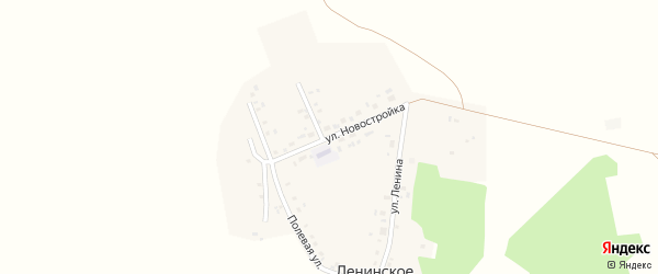 Улица Новостройка на карте Ленинского села с номерами домов