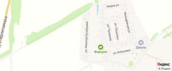 Улица Николая Кузнецова на карте села Мариинского с номерами домов