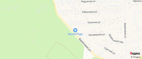 Березовая улица на карте села Булгаково с номерами домов