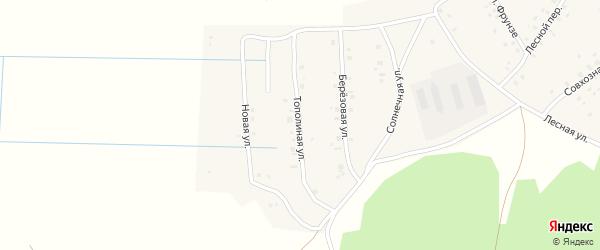 Тополиная улица на карте села Кумлекуля с номерами домов