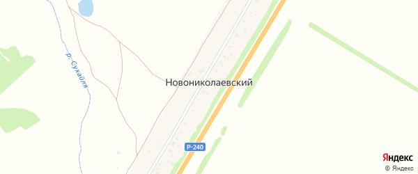 Луговая улица на карте деревни Новониколаевского с номерами домов