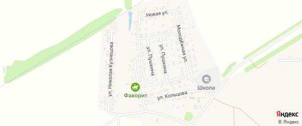 Улица Пушкина на карте села Мариинского с номерами домов