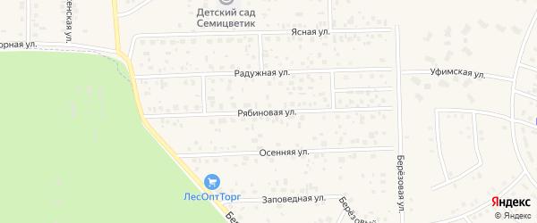 Рябиновая улица на карте села Булгаково с номерами домов