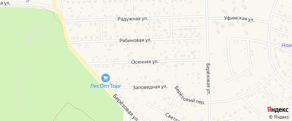 Осенняя улица на карте села Булгаково с номерами домов