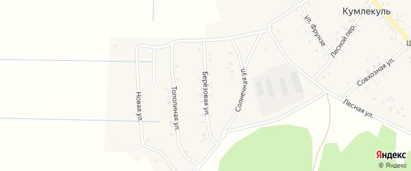 Березовая улица на карте села Кумлекуля с номерами домов