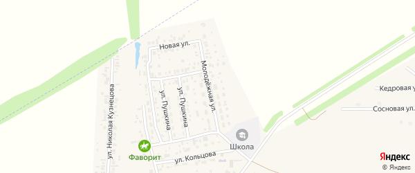 Молодёжная улица на карте села Мариинского с номерами домов