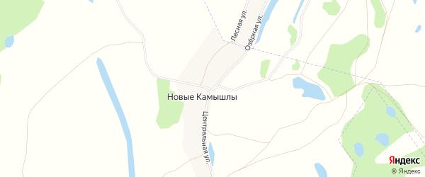 Карта деревни Новые Камышлы в Башкортостане с улицами и номерами домов