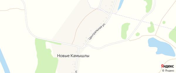 Центральная улица на карте деревни Новые Камышлы с номерами домов