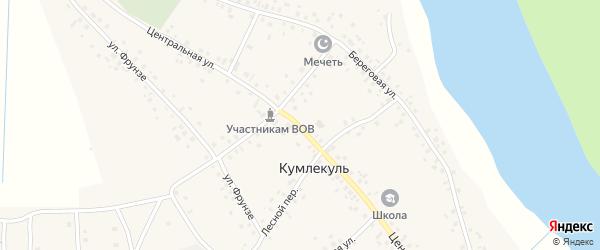 Центральная улица на карте села Кумлекуля с номерами домов