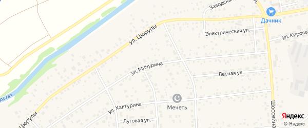 Улица Мичурина на карте села Булгаково с номерами домов