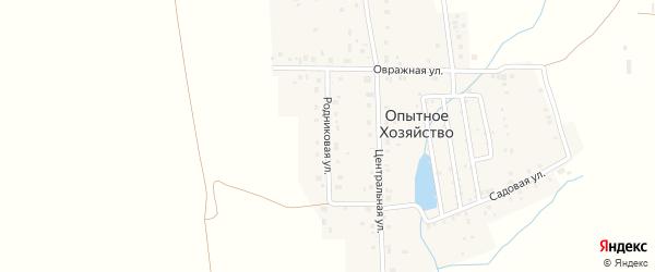 Родниковая улица на карте деревни Опытного хозяйства с номерами домов