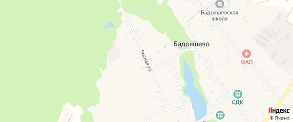 Лесная улица на карте деревни Бадряшево с номерами домов
