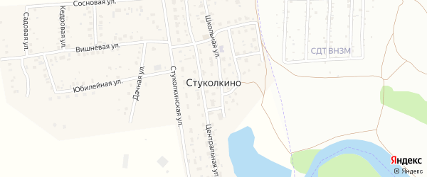 Березовая улица на карте деревни Стуколкино с номерами домов