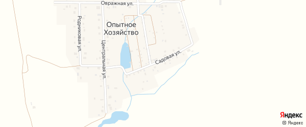 Садовая улица на карте деревни Опытного хозяйства с номерами домов