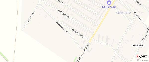 Березовая улица на карте деревни Байрака с номерами домов