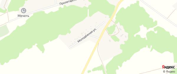 Молодежная улица на карте деревни Бадряшево с номерами домов
